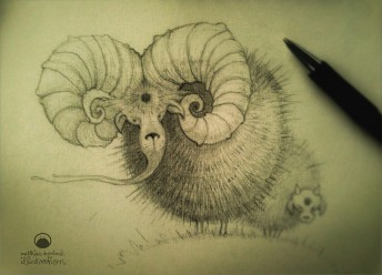 Matthias Derenbach #Illustration - blowball sheeps/sketch